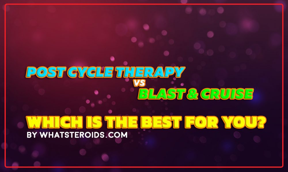 Post Cycle Therapy Vs. B&C: Which is Best for You? - What Steroids